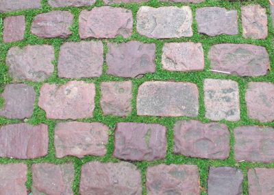 Pavé granit mélange avec joint gazon - Chantilly Oise